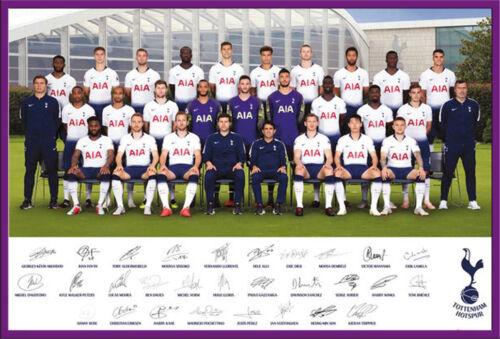 Team Poster 18//19 Sport Tottenham Hotspur Fußball Poster Druck 91,5x61 cm