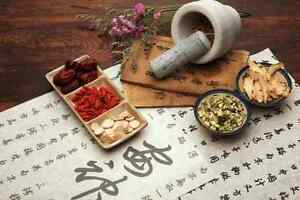 Holistic-Chinese-Medicine-amp-Remedies-on-CD-Herbs-Homeopathic-Natural-Health