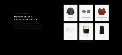 Website Design E-commerce,Square Space Package, Mobile friendly,Payments
