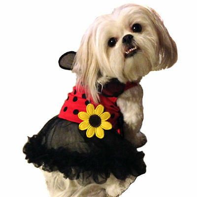 Size XS-XL Ladybug Dog, Cat, Pet Halloween Costume with TUTU