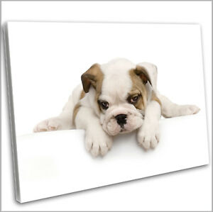 Image is loading English-British-Bulldog-Puppy-Canvas-Print-Framed-Animal- : puppy wall art - www.pureclipart.com