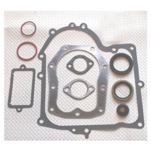 Motor Dichtsatz passend für Briggs/&Stratton B/&S Motor Modell 289707