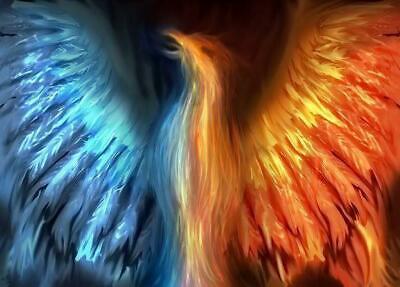 The Phoenix Trading Company
