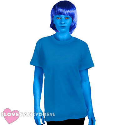 BLUEBERRY GIRL  COSTUME ACCESSORY SET WIG AND FACE PAINT BOOK FANCY DRESS