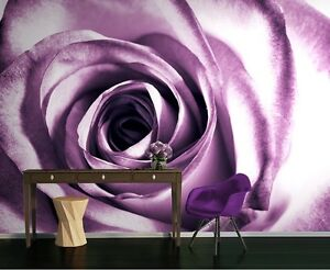 Das Bild Wird Geladen Tapete Wandkunst Fuer Wohnzimmer Amp Schlafzimmer Lila  Rose