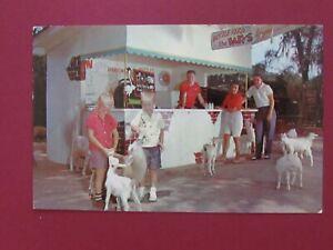 Vintage Antique Estate TV Star Tommy Bartlett\u2019s Deer Ranch Silver Springs Travel Vacation Brochure Hotel Pamphlet Card Retreat Florida