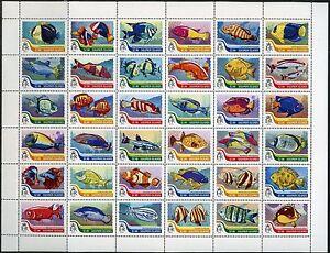 SOLOMON-ISLANDS-2016-FISH-SHEET-OF-36-MINT-NH