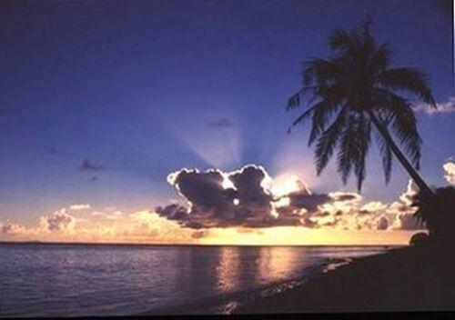 TROPICAL BEACH POSTER 24x36 OCEAN PHOTO SCENIC 36251 SUNRISE PARADISE