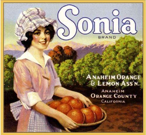 Anaheim Sonia Farm Orange Citrus Crate Label Art Print
