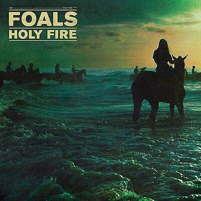 24x24 Album Artwork Fathead Poster Rock & Pop Persevering Foals