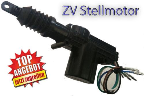 STELLMOTOR Master für ZentralverriegelungZV 12V 5polig Surga
