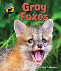 Gray Foxes by Jane P Gardner (Hardback, 2014)
