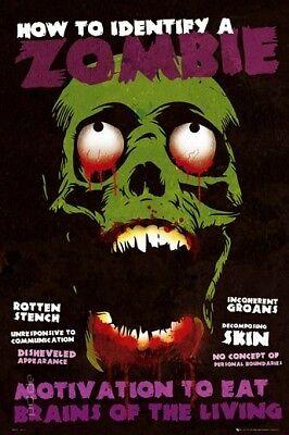 Poster Identify a Zombie Wie man einen Zombi erkennt 61 x 91,5 cm