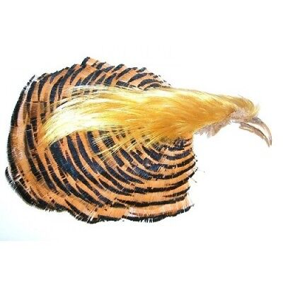 Golden Pheasant fly Tying Feathers Complete Head 1st and 2nd Grade available