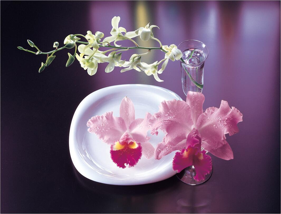 3D Pure Flowers And Cups 1 Wall Paper Print Decal Wall Deco Indoor wall Mural