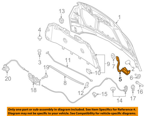 FORD OEM Hood-Hinge Right CP9Z16796A