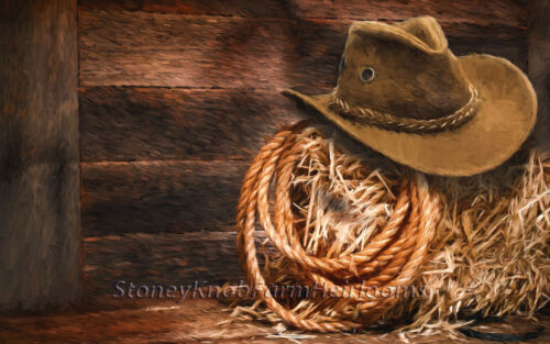 Cowboy Hat /& Lasso ~ American West ~ DIY Counted Cross Stitch Pattern