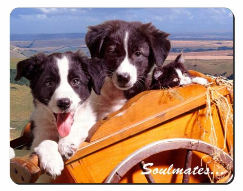 SOUL-24M Border Collie Puppies /'Soulmates/' Computer Mouse Mat Christmas Gift Id