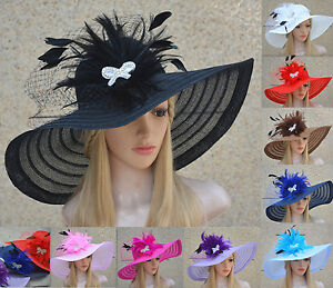86ce6607d18f5 Image is loading Womens-Dress-Church-Kentucky-Derby-Wide-Brim-Feather-
