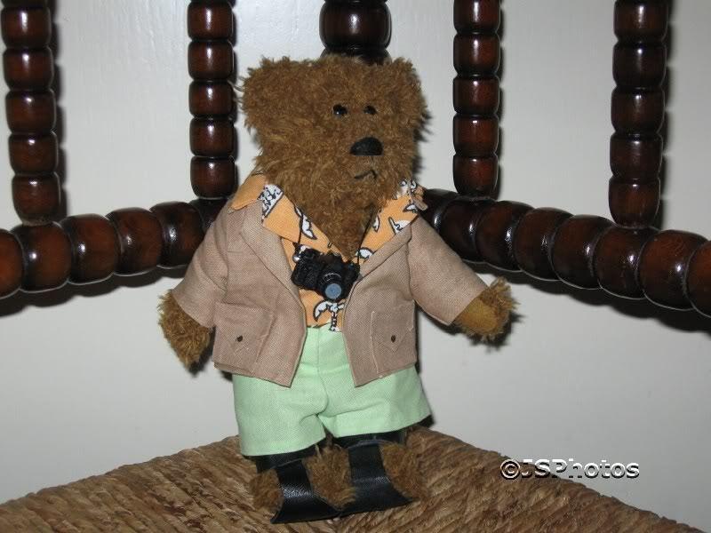 Venus Promotions London UK Tourist Bear