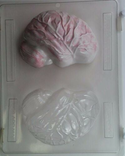 3D BRAIN CLEAR PLASTIC CHOCOLATE CANDY MOLD H048