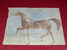 [EQUITATION CHEVAUX HORSES] DESSIN ORIGINAL ANCIEN AQUARELLE water color (25)