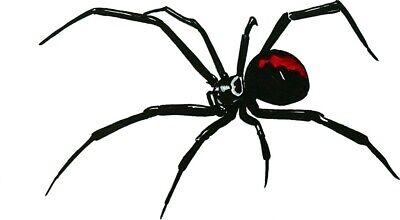 Venomous Car Laptop Bumper Window Vinyl Decal Sticker 01419 Black Widow Spider