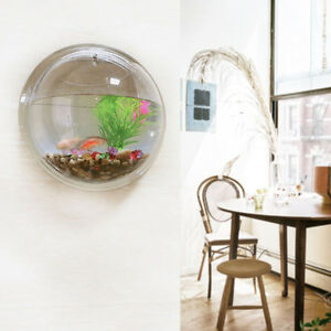 Home Decor Wall Hanging Flowers Plants Mount Bubble Aquarium Bowl Tank Aquarium Ebay