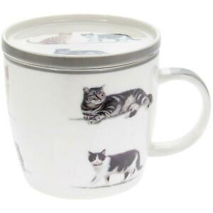 Details About Cats Kittens Design China Mug Coaster Tea Coffee Cup Gift Set Show Original Title