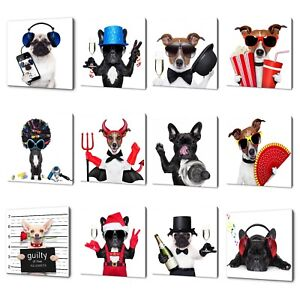 PARTY ANIMALS HAPPY DOGS CANVAS PRINT PICTURE WALL ART HOME DECOR FREE POSTAGE
