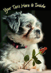 PERSONALISED SHIH TZU TERRIER DOG BIRTHDAY ANY OCCASION CARD Colour Insert