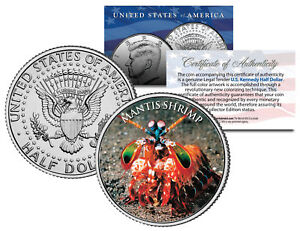 MANTIS-SHRIMP-Crustaceans-Fish-JFK-Kennedy-Half-Dollar-U-S-Colorized-Coin