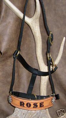 Custom Personalized Bronc Halter,Your Horses Name, Ranch... Award, Stable, Ranch... Name, G&E c40e7e