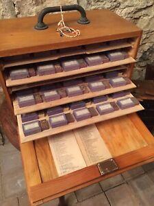 Sammlung-Kraeuter-Blueten-usw-getrocknet-in-tollem-Schraenkchen-Top-alt-antik
