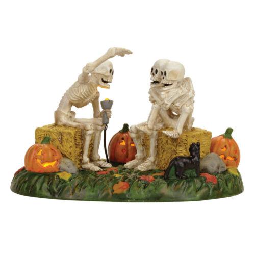 Dept 56 Halloween Village LIT SCARY SKELETON STORIES 4056710 Skeleton House BNIB