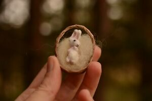 Miniature-Rabbit-Rita-in-the-basket-OOAK