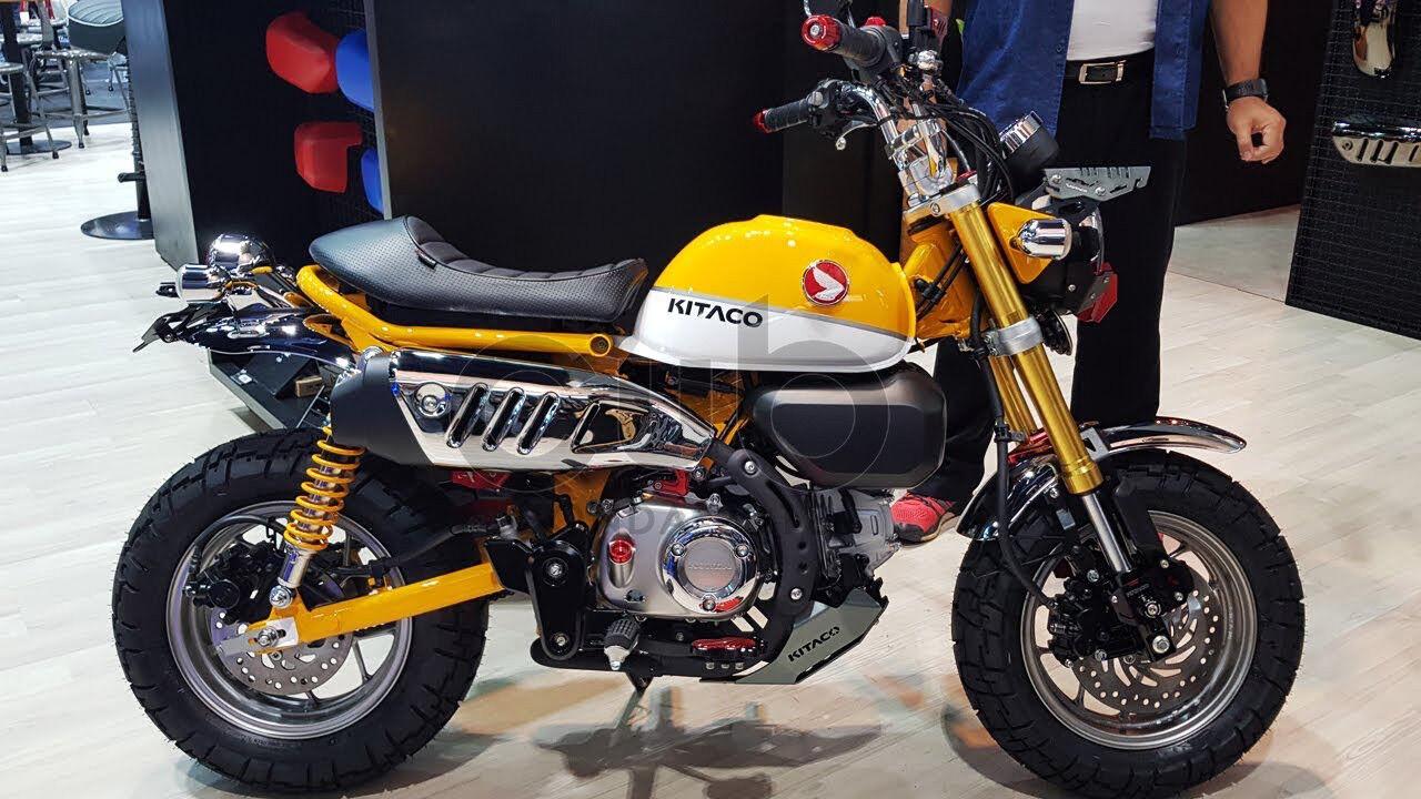 Black Toygogo New Motorbike Skid Plate Engine Protection for Monkey 150cc ATV Dirt Bike