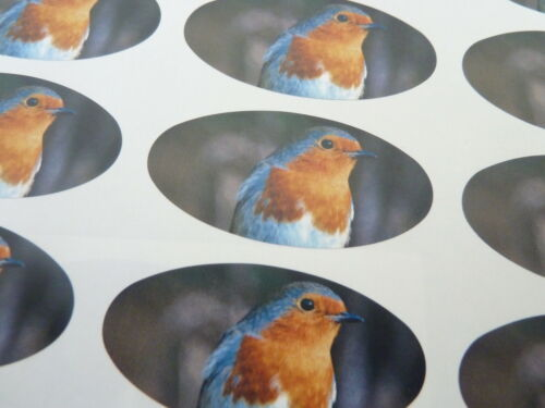Cards Envelopes Stickers for Gift Wrap Robin Oval Seal Labels