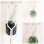 Macrame-Plant-Hanger-Willow-Handmade thumbnail 4