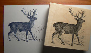 Image Is Loading P38 Buck Deer Rubber Stamp Wood Mounted Deep