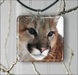COUGAR-HEAD-IN-WINTER-SQUARE-PENDANTS-NECKLACE-EARRINGS-yth4Z