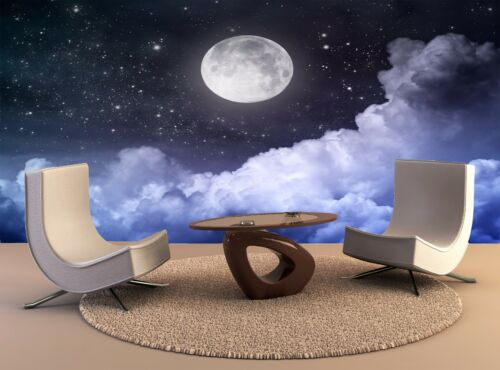 Night Sky 3D Bedroom Removable Wall Art Mural Decals Living Room