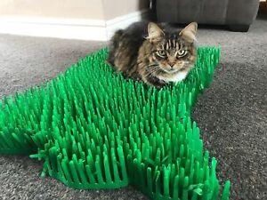 Tissue-paper-grass-mat-cat-toy-cat-not-included-15-x-24-inches-FAST-DELIVERY