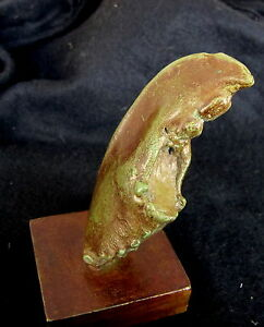 Bronze-Lost-Wax-Cast-034-Lobster-Claw-on-Stand-034-Decorative-Sculpture-Fine-Art