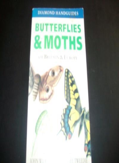 Butterflies and Moths of Britain,John Wilkinson