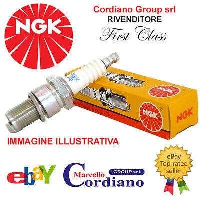 KIT33-G 8 Candele Alfa Romeo twinspark NGK