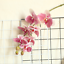 thumbnail 6 - Beautiful-Artificial-Phalaenopsis-Orchid-Flower-Bunch-of-2-White-Pink-Purple