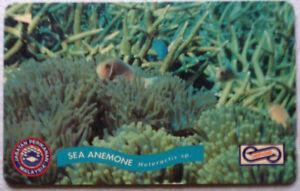 Malaysia-Used-Phone-Card-Marine-Creature-Sea-Anemone