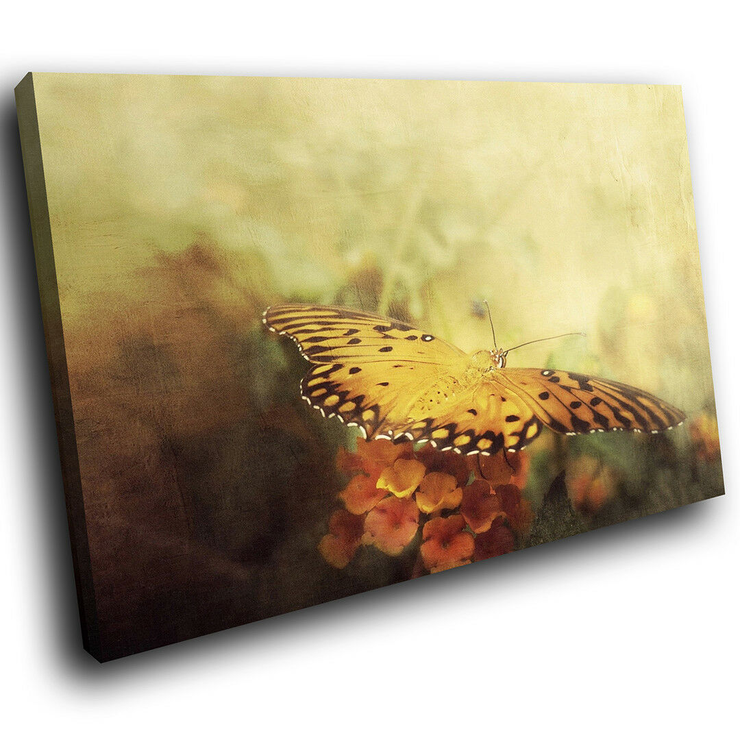 A239 Vintage Butterfly Orange Funky Animal Canvas Wall Art Large Picture Prints