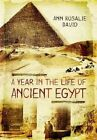 A Year in the Life of Ancient Egypt by Ann Rosalie David (Hardback, 2015)